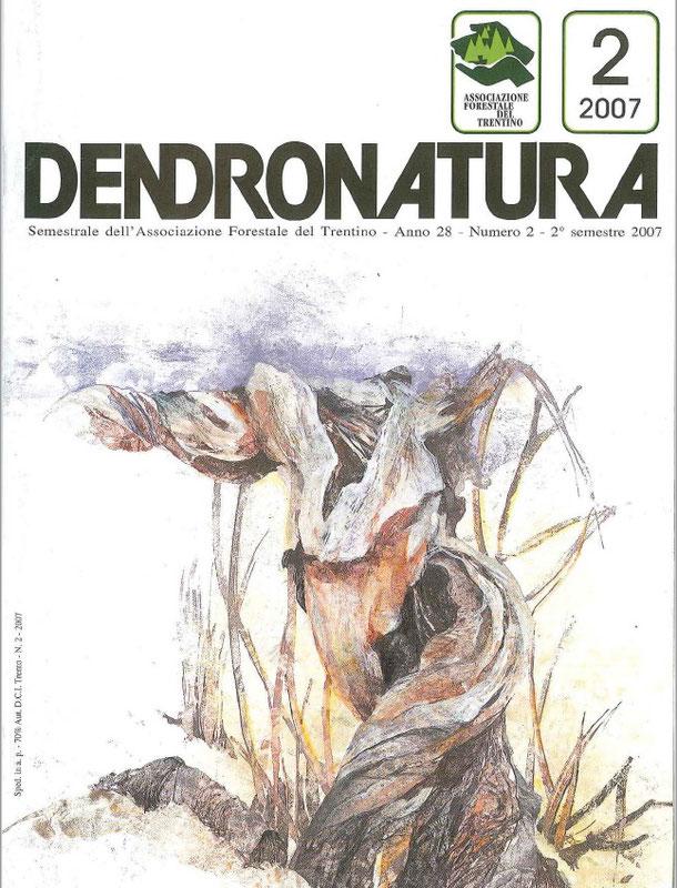 Foto di copertina: un'opera di Carla Caldonazzi (2007)