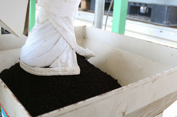 培土:もちろん、当会指定の無肥料の土です  JAを通じて購入していだきます