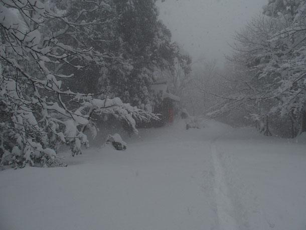 昨日17日:雪の中にたたずむ文殊山室堂です。