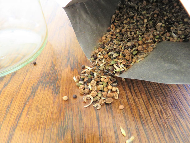 Reine Wiesenblumen- und Kräutermischung von Kiepenkerl