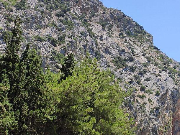 Auffaltung sichtbar durch die schrägen Gesteinsschichten