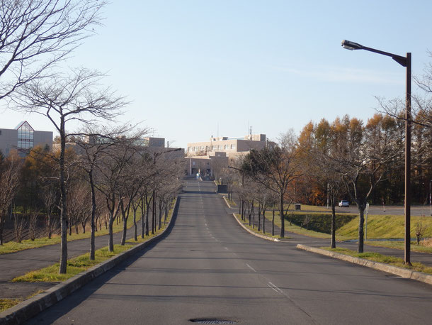 僕が通っていた、東京農業大学生物産業学科の入り口!
