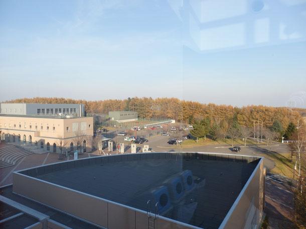 これは上の写真の位置から左側を見た景色☆こっちも見渡す限り大学の土地!!やっぱり広い!!こっち側にもなんか研究や農作の場所が広がってた気がします!!僕は一切立ち入った事がないエリア(笑)