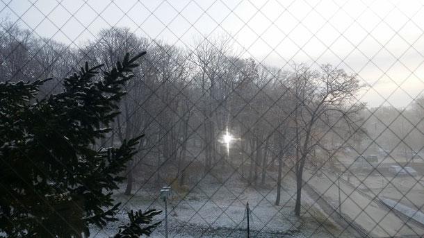 2日目、目が覚めカーテンを開けるとホテルの部屋から見た外の景色は、白い世界に!!夜中温泉入った時確かに寒かったけど、まさか雪が降るとは!!でも、こういう色、そして匂いが北海道の素敵な一面ですよね♪