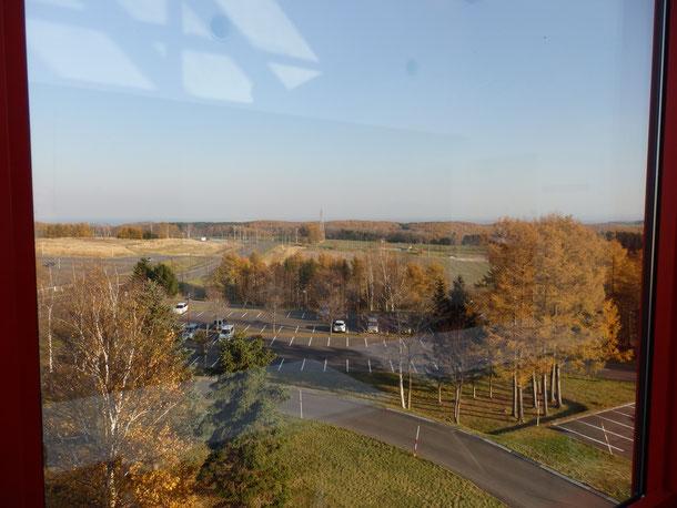 農大のキャンパスから見える景色♪ここから見える土地は大学の土地☆広い!!向かって右側には、ヤギ、エミューなど動物が飼育されてるエリアが広がります♪