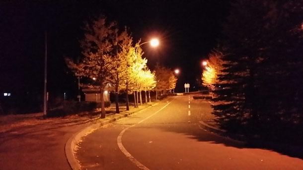 夜になるとアパートでウクレレの練習ができなかったから、アパートの横にあったこの公園で練習してました☆街灯もしっかりしてて快適な公園☆懐かしい♪