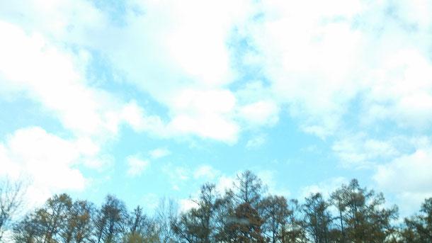 4日目は、天気がとてもよく綺麗な青空☆寒いかなと思ってましたが、北見も網走もそれほど寒くなくて良かった^^/