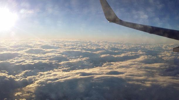 帰りの飛行機から見えた一面白い雲の世界!!