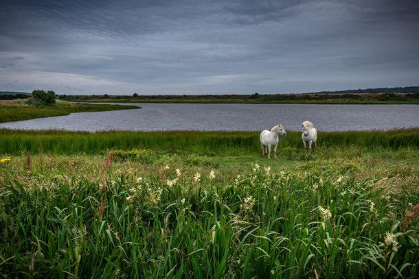 Fotoreise Nordwales mit Sebastian Kaps