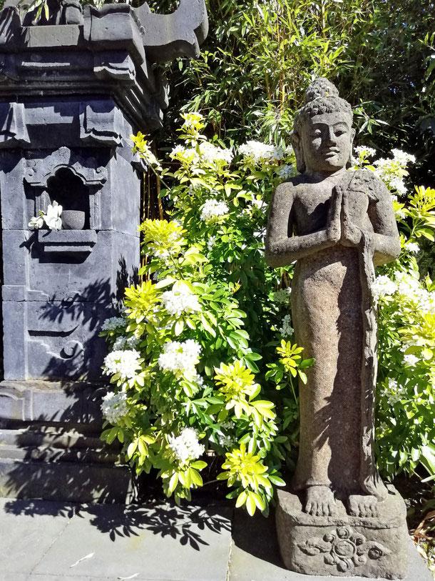 Tempeltor+Buddha mit Begrüßungsgeste nebst blühendem mexikan. Orangenblütenstrauch