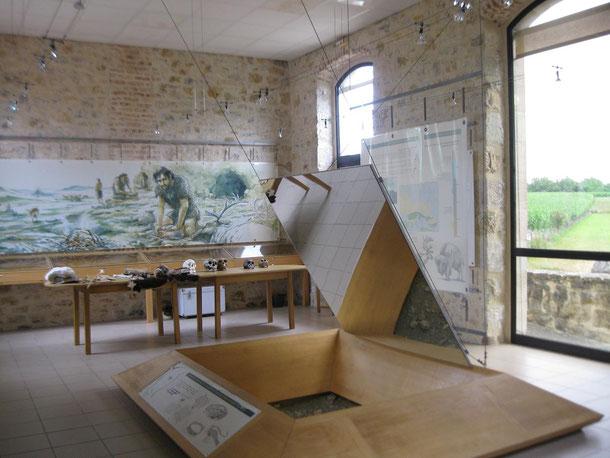 musee-de-la-chapelle-aux-saints