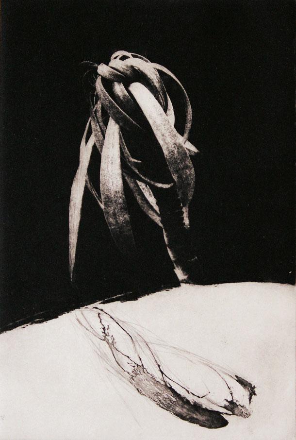 "Isabelle Panaud - gravure -  ""A contrario"" - gravure contemporaine - Rouge Grenade"