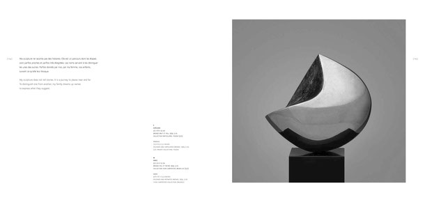 Jean-Pierre GHYSELS, sculpture goéland 20 x 16 x 13 cm bronze brut et poli, 1974, 5 ex. collection particulière, itegem (5/5) — seagull 7.9 x 6.3 x 5.1 inches polished and unpolished bronze, 1974, 5 ed. 5/5: private collection, itegem
