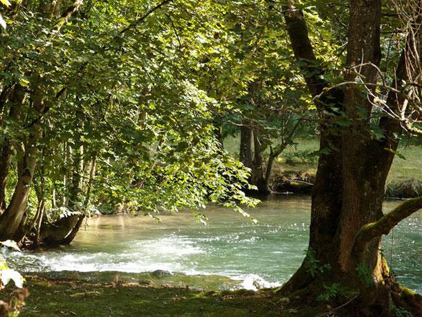 kleiner See umstanden von Bäumen im Lautertal schwäbische Alb