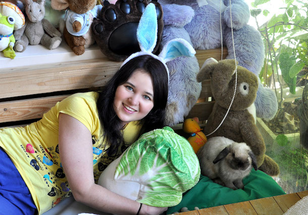 hanging out with rabbits in the rabbit cafe in Bangkok