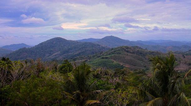 Вид на холмы и тропическую зелень со смотровой площадки Большой Будда на Пхукете