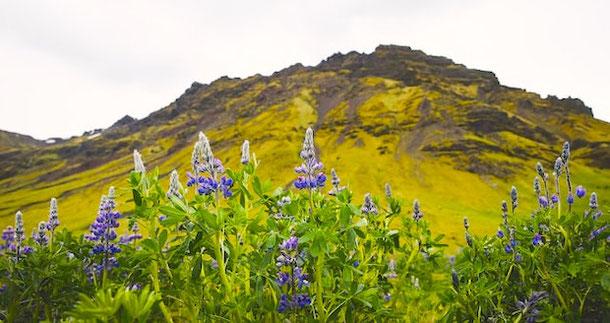 Восточная часть Исландии