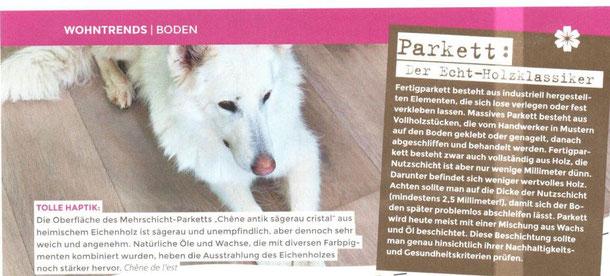 S. Fischbacher Living, Veröffentlichung in der Zeitschrift Family Home