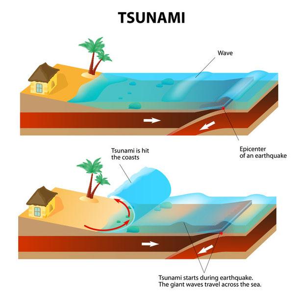 Wie entsteht ein Tsunami? Infografik