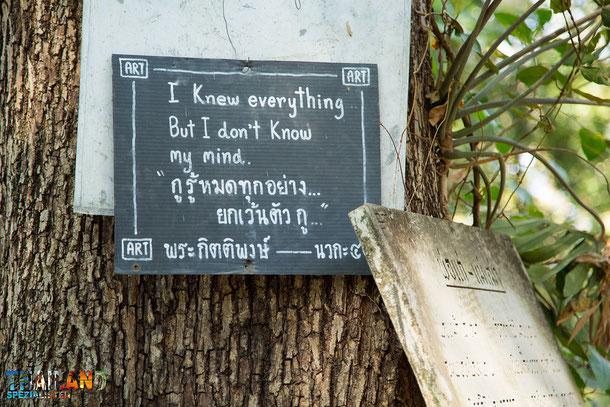Wisdom Trees Wat Umong