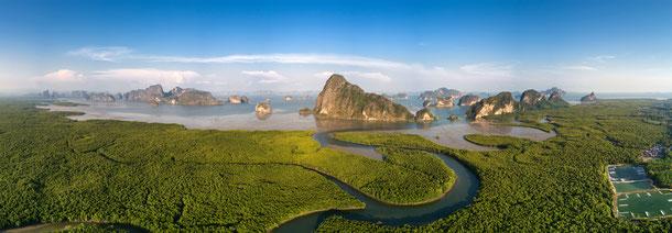 Mngrovenwald Thailand