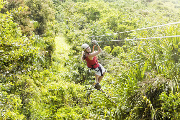 Flight of the Gibbon in Chiang Mai