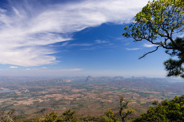 Phu Kradung Nationalpark