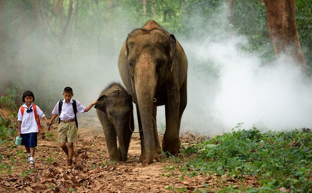 Buchen Sie mit den Thailand-Spezialisten eine Kombi-Rundreise Thailand und Laos