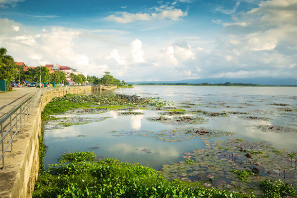 Phayao See