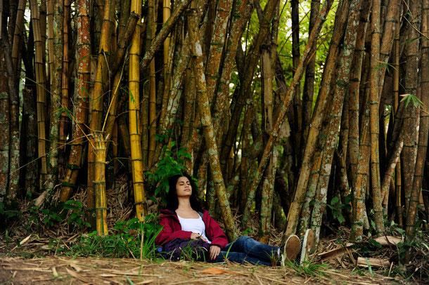 Schatten spendet: Bamboo - und die Natur genießen!