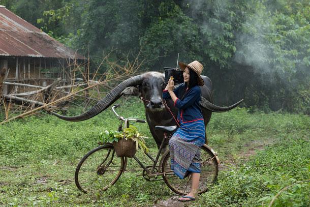 Radreisen in Thailand