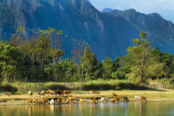 Klima und Wetter in Laos