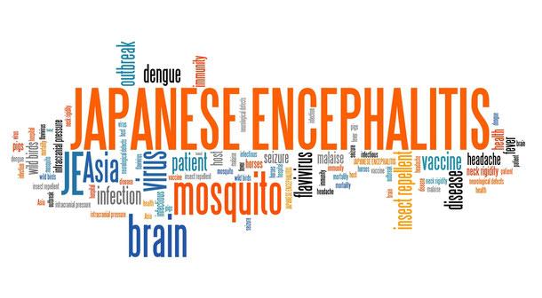Die japanische Enzephalitis ist zwar selten, aber nicht zu unterschätzen.