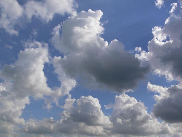 op je rug in het weiland wolken kijken...........is echt een belevenis!