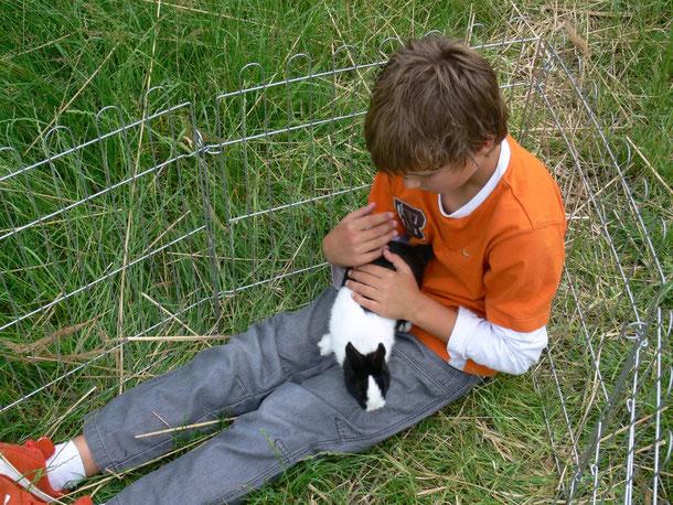 zorgen voor of spelen met een konijn
