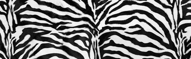 Supellex Sofia Ohrensessel, Fernsehsessel mit Armlehnen und Hocker Design: Tierfellimitat, Zebra Schwarz-Weiß