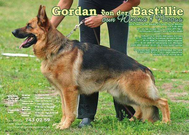 Gordan von der Bastillie