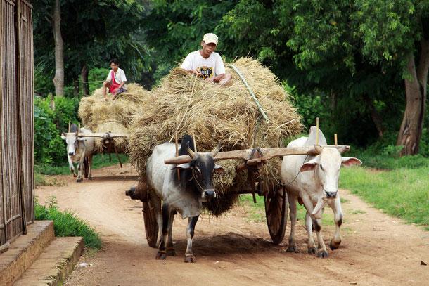 Kayah-Staat in Myanmar