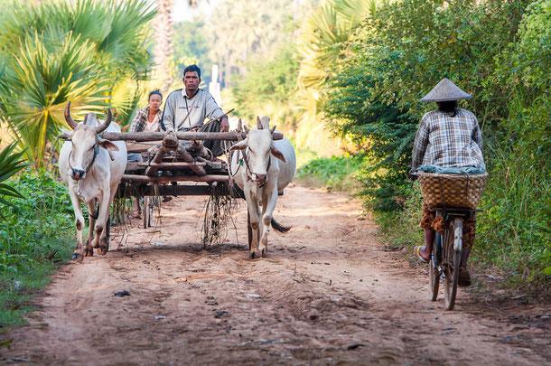Trekking in Burma