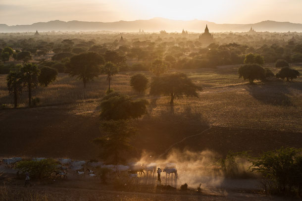 Sunset at Bagan pagodas in Myanmar