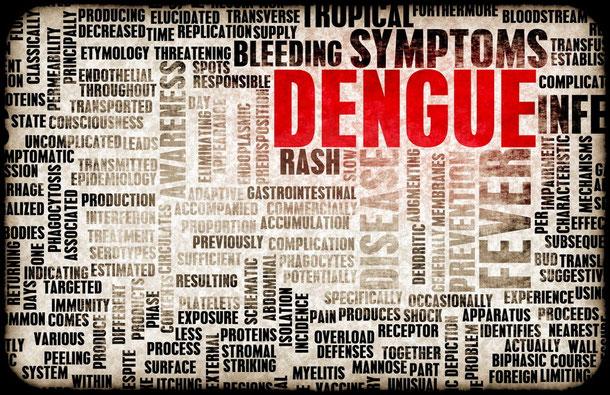 Dengue-Fieber im Myanmar Urlaub