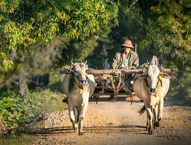Dorf in Burma