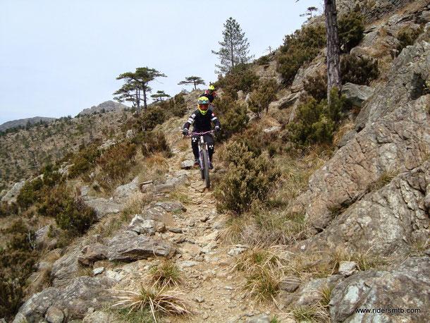 il sentiero lascia posto ad un esile single track, a volte insidioso causa leggera esposizione
