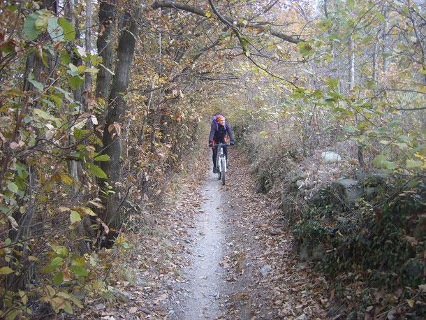 ...e sentierini - giungiamo nei pressi Giaveno.