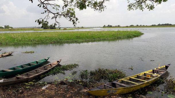 Am Volta Fluss