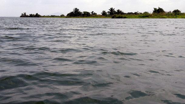 Bootsfahrt auf dem Volta-Fluss