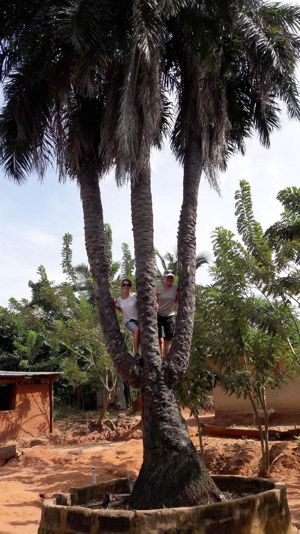 Uschi und Anja auf der dreistämmigen Palme