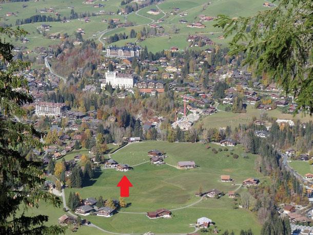 Lage der Ferienwohnung mit Blick auf Hotel Alpina, Hotel Palace und Park-Hotel