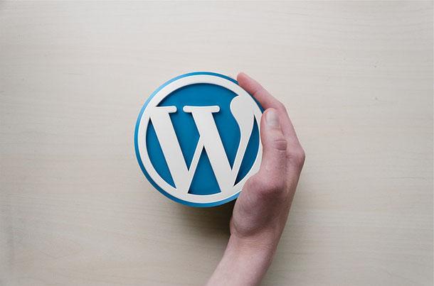 Was ist WordPress? WordPress Agentur, Fix-Text