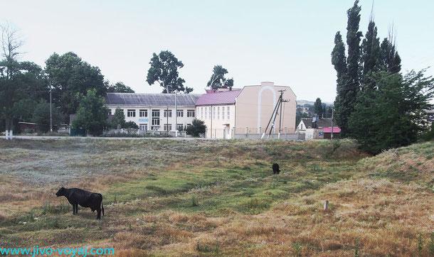 Татарская школа в Вилино